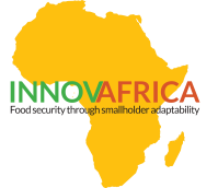 Highlight InnovAfrica: food security through smallholder adaptability