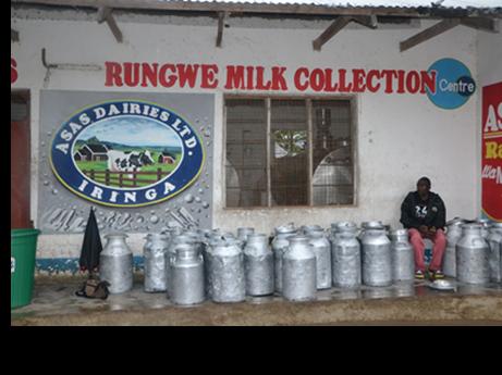 rungwe